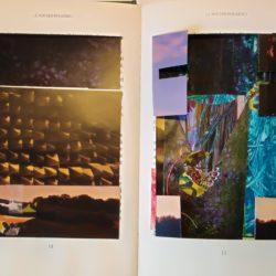 4-Le roi des Fougères 3 pages