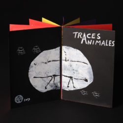 POP UP : livre « Traces Animales »