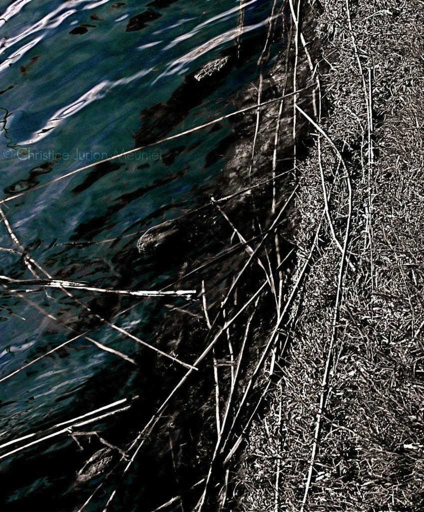 13 Des sons d'eau ©