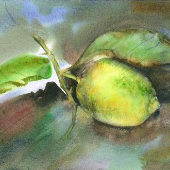 Aquarelle – Aube et citron
