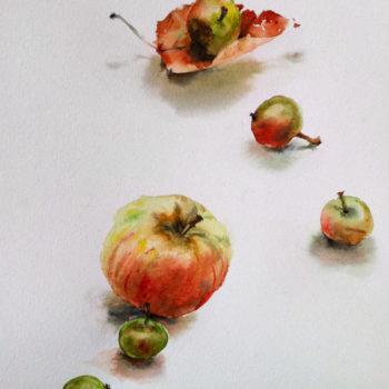 Aquarelle – Jeté de pommes