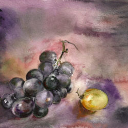 Aquarelle – Raisin et grain en pénombre