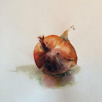 Aquarelle – Un oignon seul